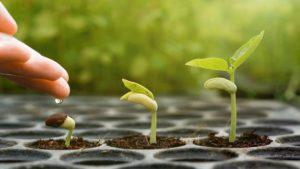 Prayer For Spiritual Awakening and Growth