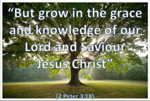 Prayer To Grow In Grace And A Knowledge Of Jesus