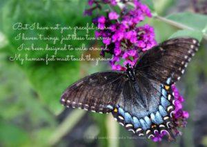 Prayer Of A Grateful Heart