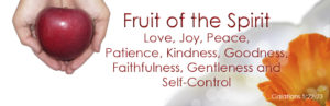 Prayer For The Spirit's Fruit of Patience