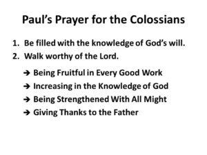 Prayer For A Fruitful Week
