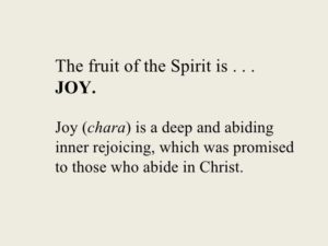 Thank For the Joy is Abiding in Christ