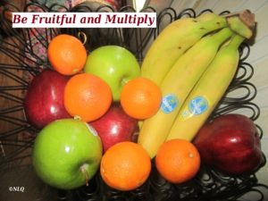 To be fruitful and to multiply
