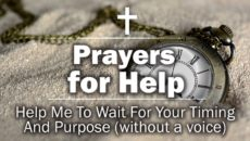 Help Me To Wait For Your Timing And Purpose