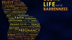 Prayer For Fruitful Life